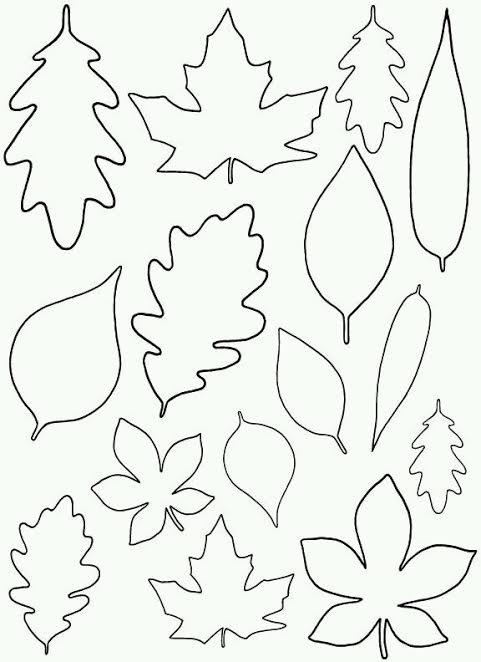 Ağaç Yapraklarından Duvar Süsü Yapımı