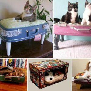 eski-bavuldan-kedi-yatagi-yapimi