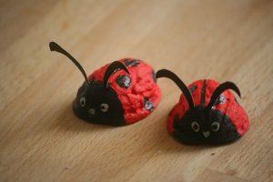 Ceviz Kabuğundan Uğur Böceği