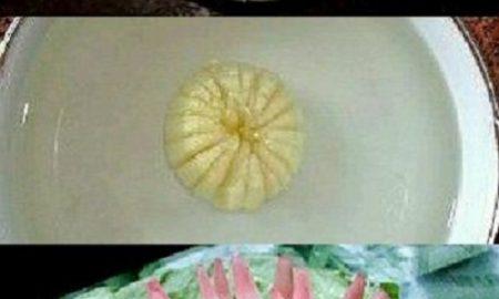Soğandan Nasıl Çiçek Yapılır