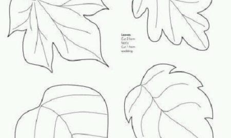 Yaprak Şablonları