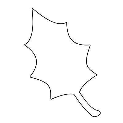 Yaprak Şablonu-6