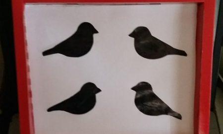 Kuşlu Pano Yapımı