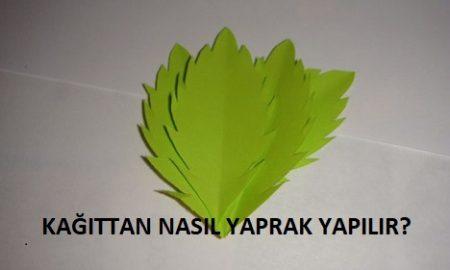 Kağıttan Nasıl Yaprak Yapılır