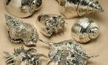 Deniz Kabuğundan Dekoratif Süs Yapımı