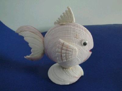 Deniz Kabuklarından Balık