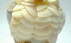 Deniz Kabuklarından Nasıl Biblo Yapılır