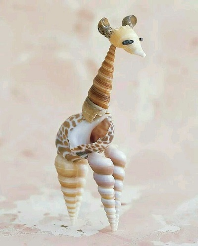 Deniz Kabuklarından Zürafa