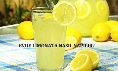Evde Limonata Nasıl Yapılır