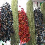 Sebze Kurutmanın Püf Noktaları