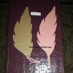 Ayakkabı Kutusundan Yaprak Kitap Ayracı Yapımı